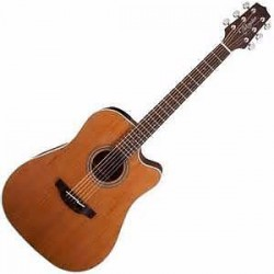 TAKAMINE GD20CE Natural Satin