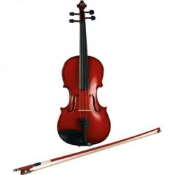 EKO EBV1413 Violino Maestro 4/4