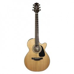 TAKAMINE GSF3CE-NG