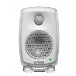 GENELEC 6010A USATO