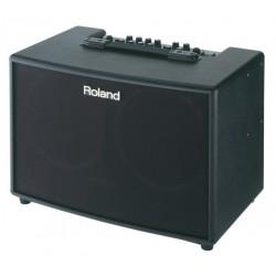 ROLAND AC60 combo