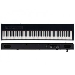 ROLAND F20 Contemporary Black